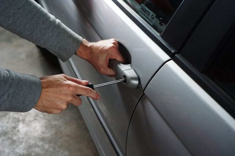 types of car theft