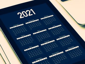 Calendar 2021 palindrome dates