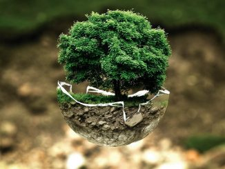 Earth Day 2021: How to preserve it?