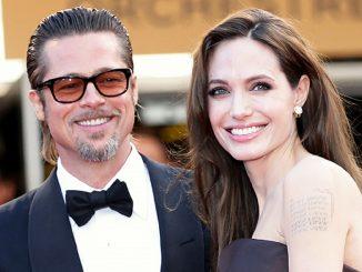 Brad Pitt wins joint custody of his six children