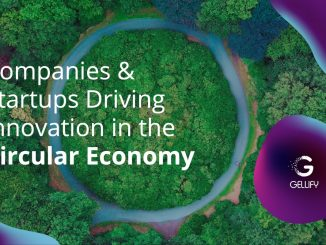 GELLIFY, the circular economy report